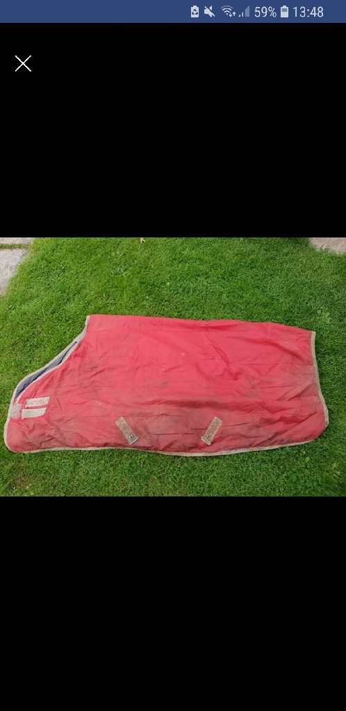 5ft9red amigo stable rug