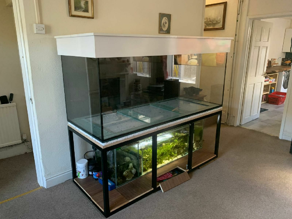 6ft fishtank sump and stand