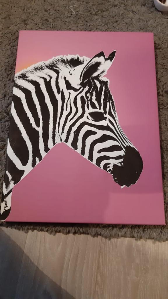 Zebra canvas