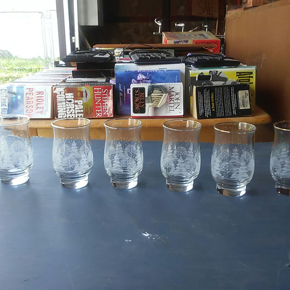 Etched crystal set glasses