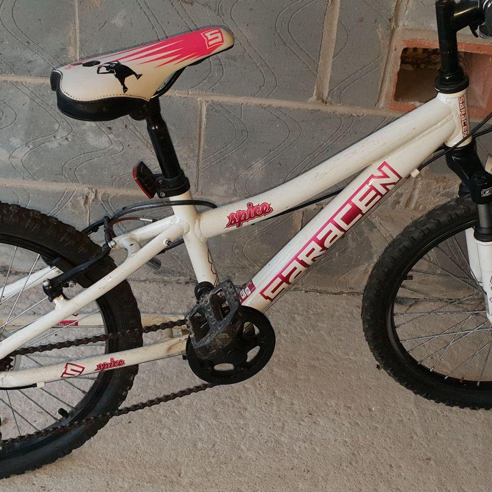 Saracen spice 20 inch kids bike
