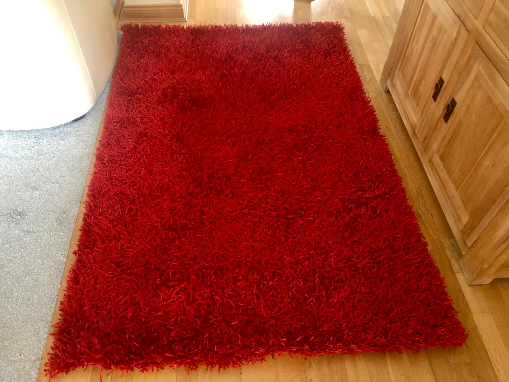 Shaggy Red Rug From SCS