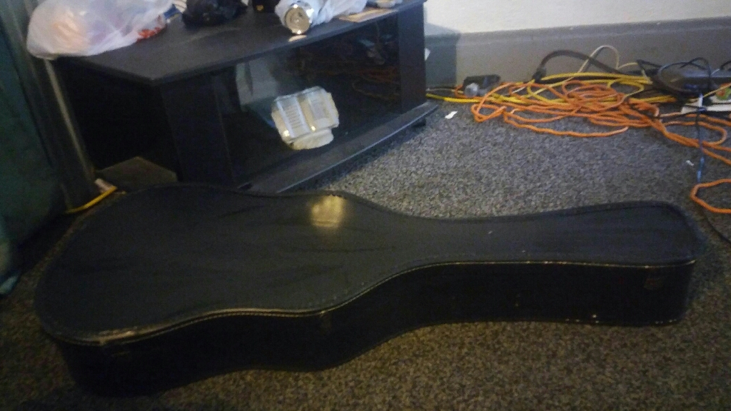 Eleca Acoustic gutair