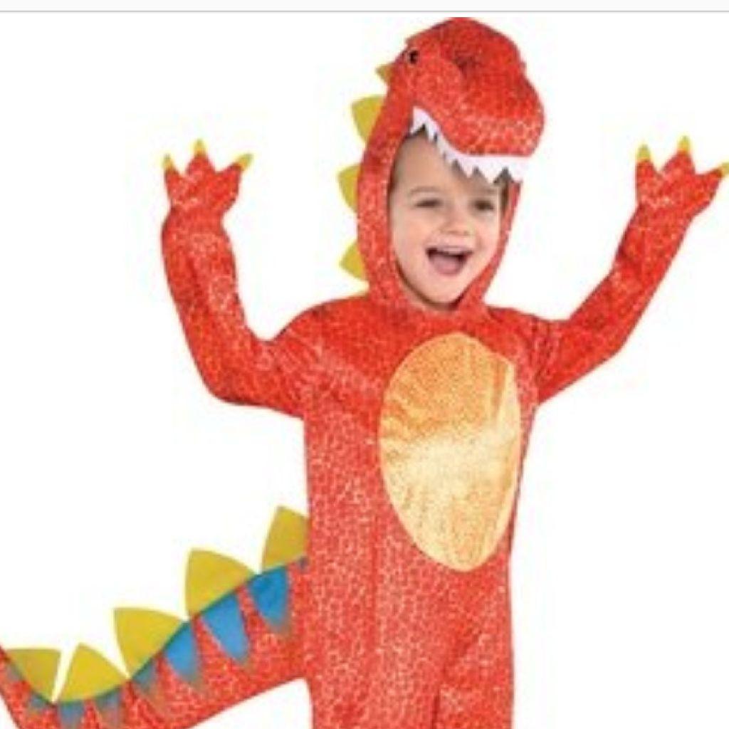 Dinosaur dress up costume
