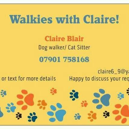 Dog walker/walking & Cat sitter
