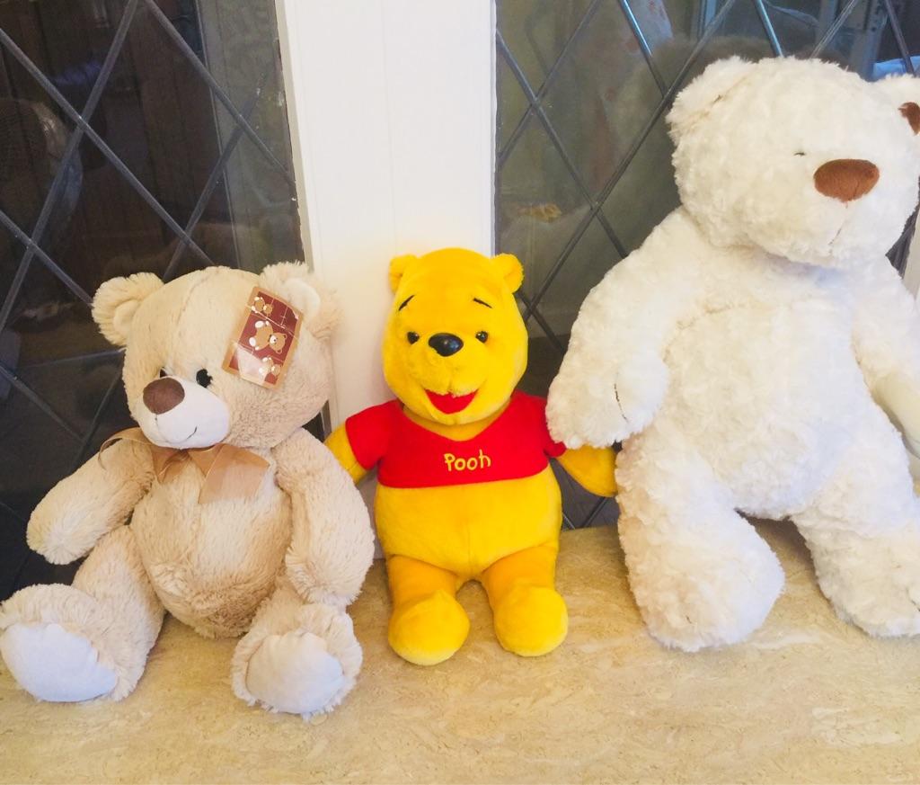 Teddy's