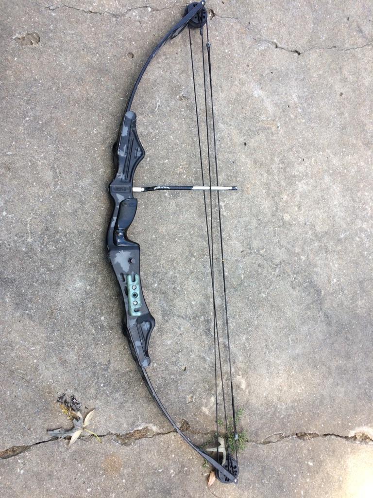 Pearson Bushmaster compound bow
