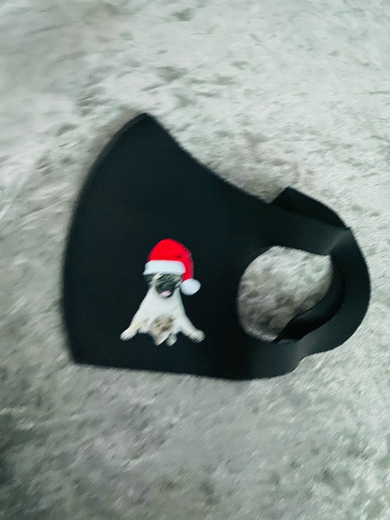 Black Christmas Santa dog face mask