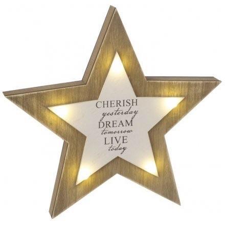 LED Star Decoration