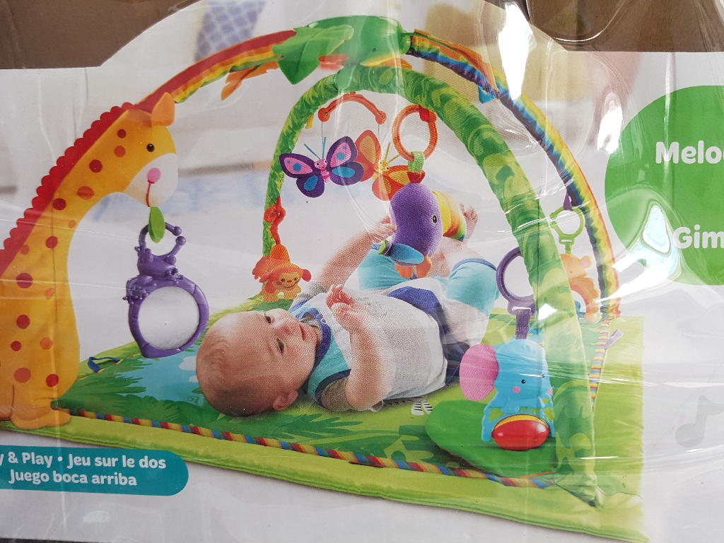 Fisher - Price Deluxe Jungle Gym