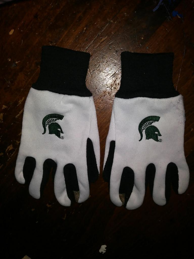 Men/Women State Michigan Gloves