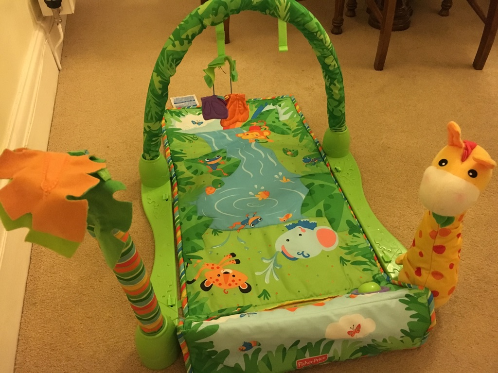 Baby jungle gym. Fisher price