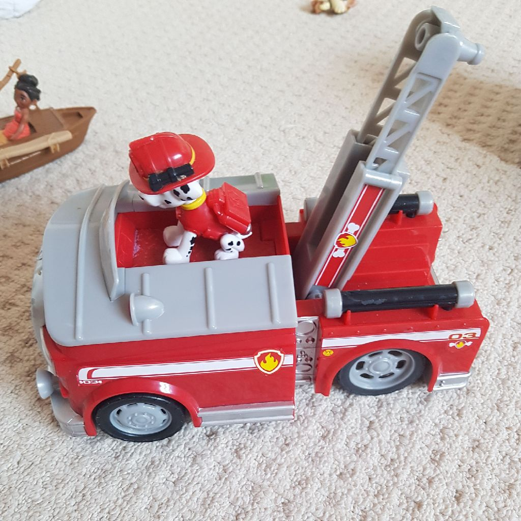 Paw patrol Marshall and fire truck