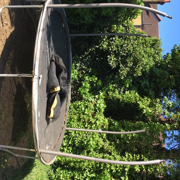12 ft trampoline and enclosure