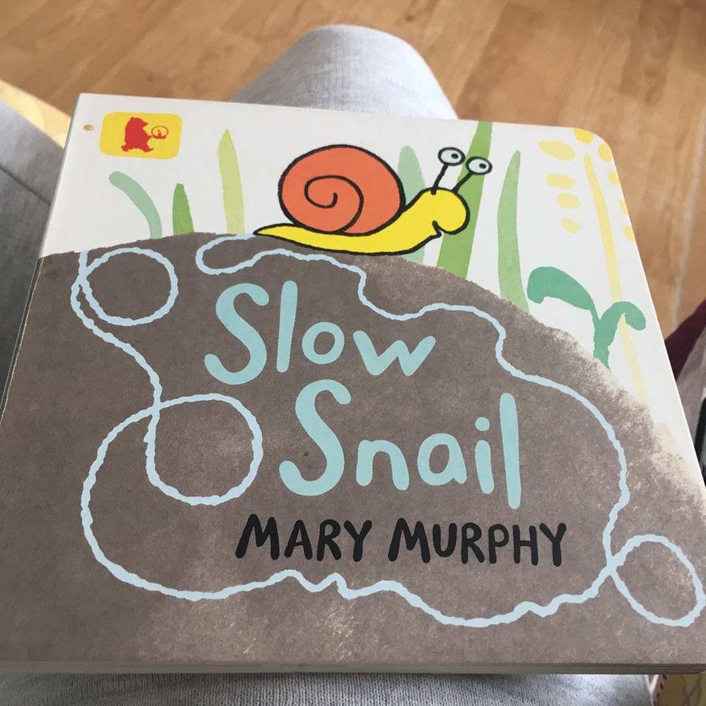 Slow snail by Mary Murphy book
