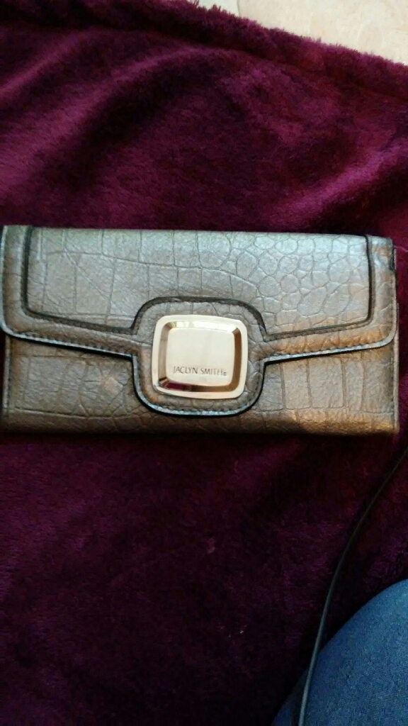 Jaclyn smith silver wallet