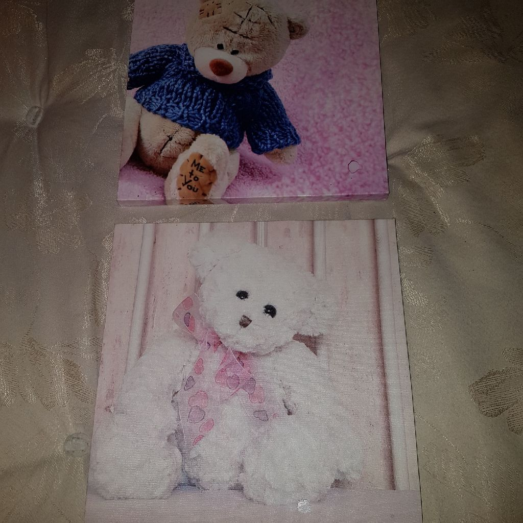 2 teddy bear canvas pictures