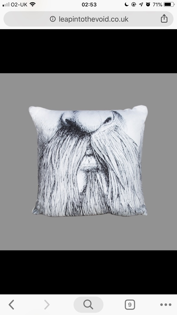'Beard' Cushion