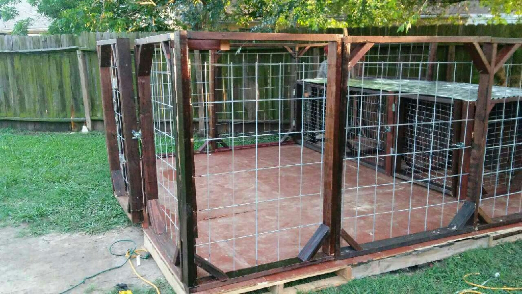 Custom Built Dog Kennels ( Stained)