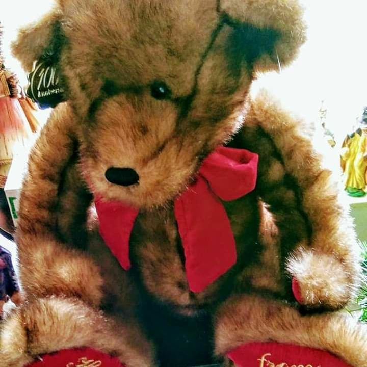 LIKE NEW ADORABLE TEDDYBEAR $10