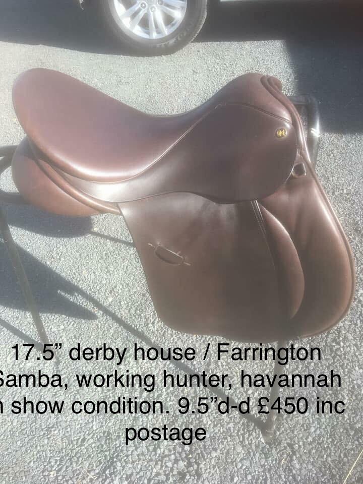 "Derby house / farrington samba 17"" x wide"