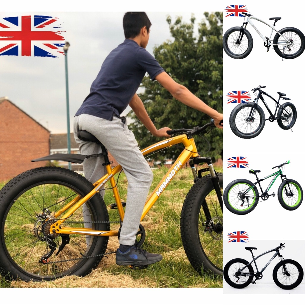 Mammoth Fat Tyre Road/Beach/Snow Bikes NEW
