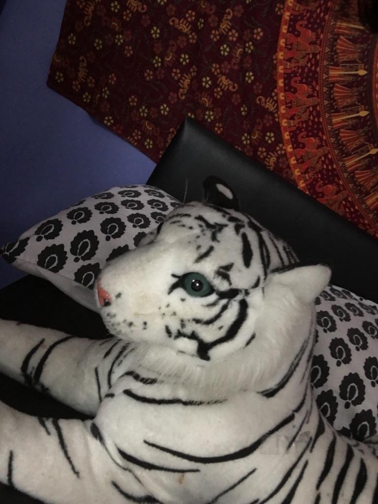 Large tiger plushies