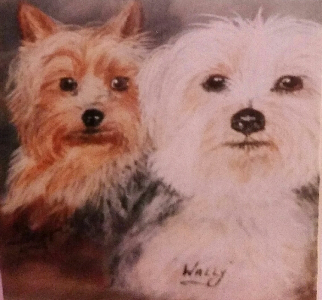 PETS PAINTINGS FOR CHRISTMAS FROM £29.50