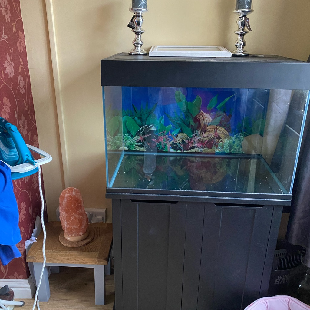 SOLD     Fish tank and unit