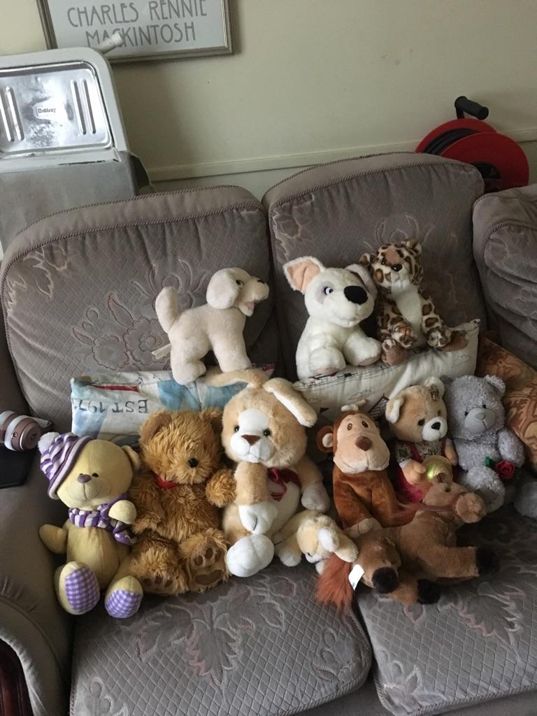 Assortment of Soft Plush Animals