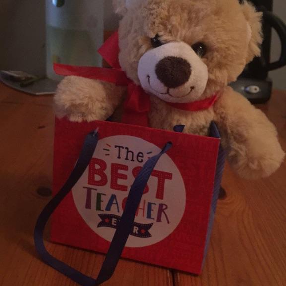 Best teacher teddy bear