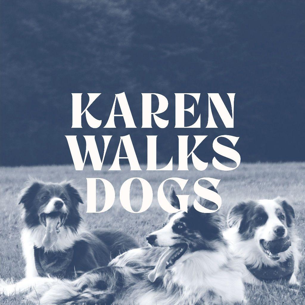 Karen Walks Dogs East Belfast dog walking and pet visits