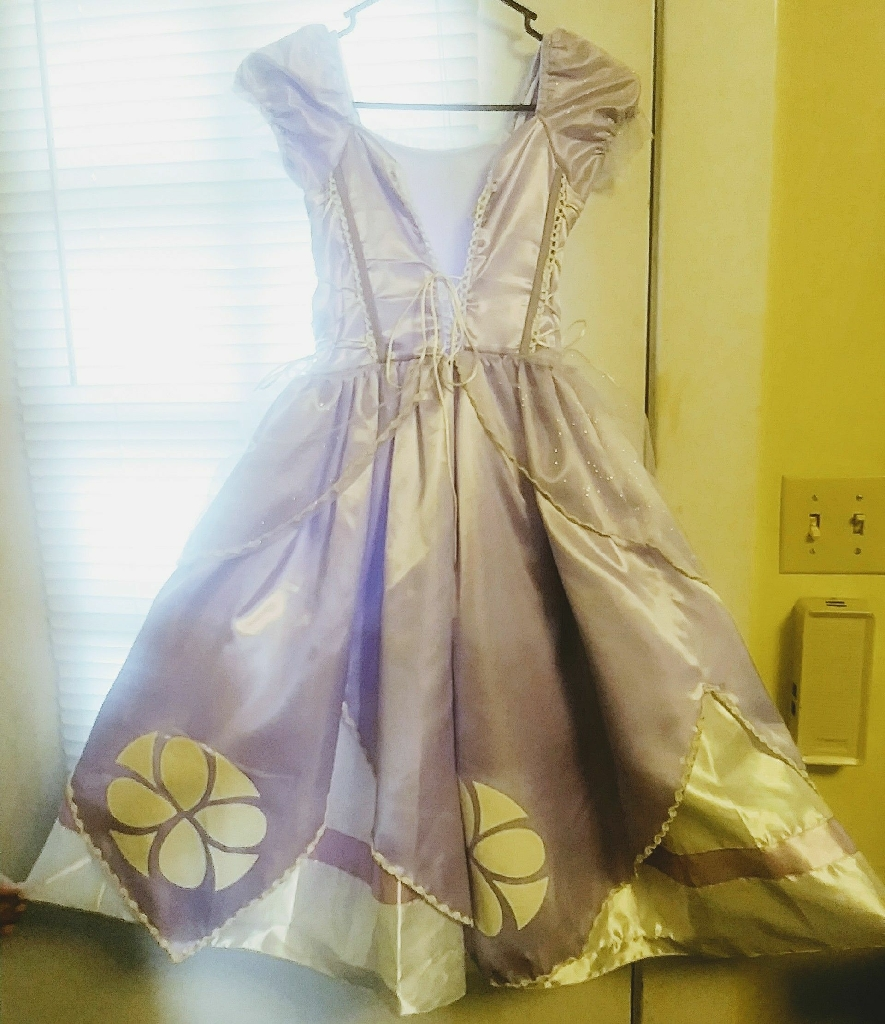 Girl's Sophia the First princess dress