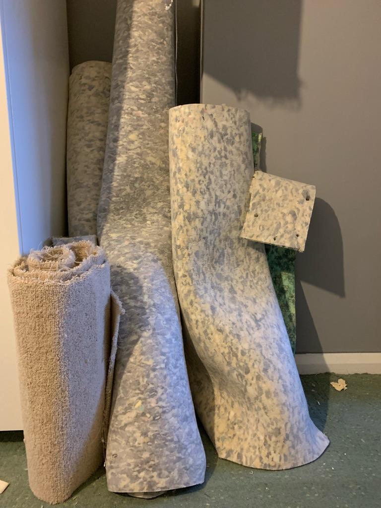 Neutral carpet and underlay