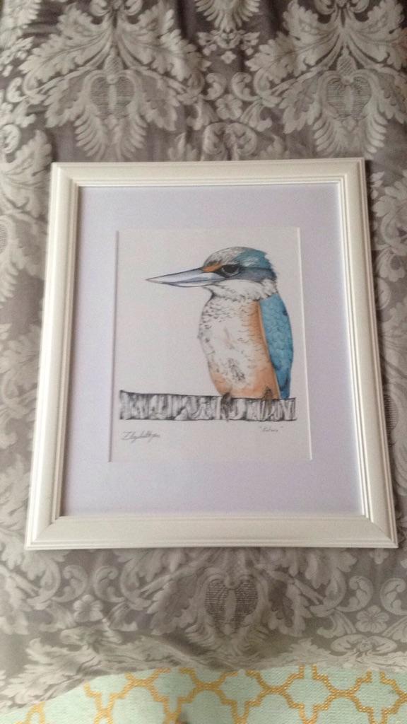 """Kotare"" Nz Native Bird in A2 frame"