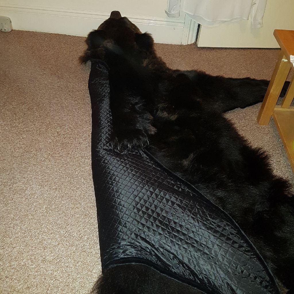 Bear rug carpet