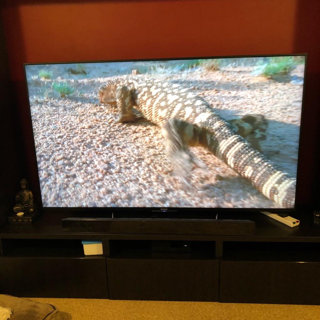 Sony Bravia 65 inch tv