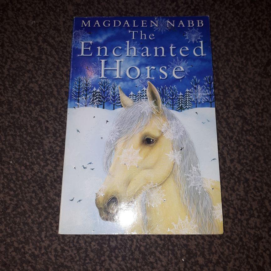 Magdalene Nabb book