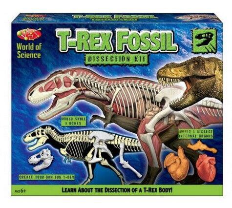 World Of Science - T-REX Fossil Dissection Kit