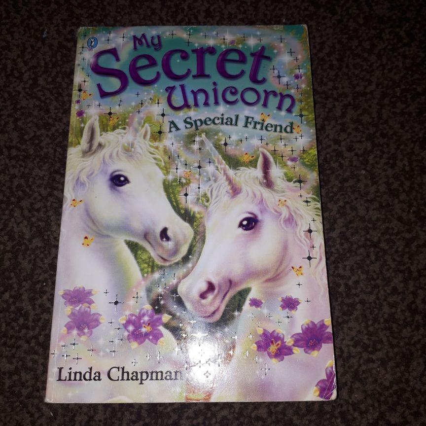 Linda Chapman books x4