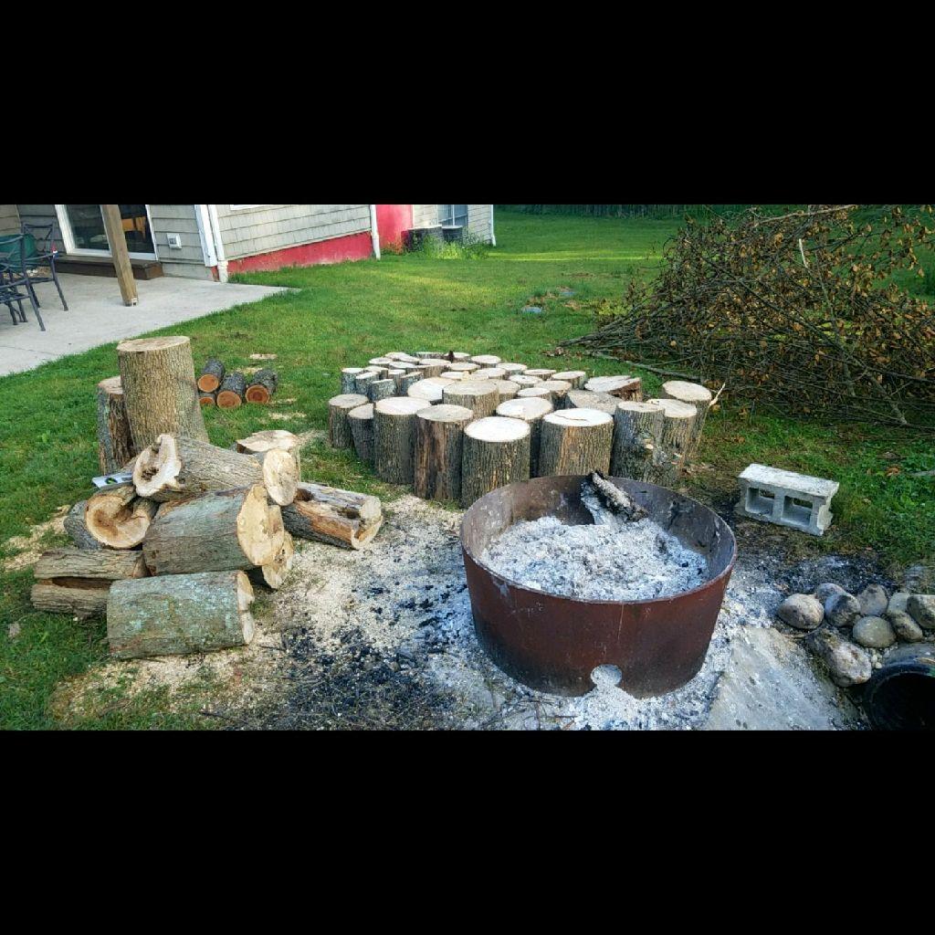 Lots of firewood logs