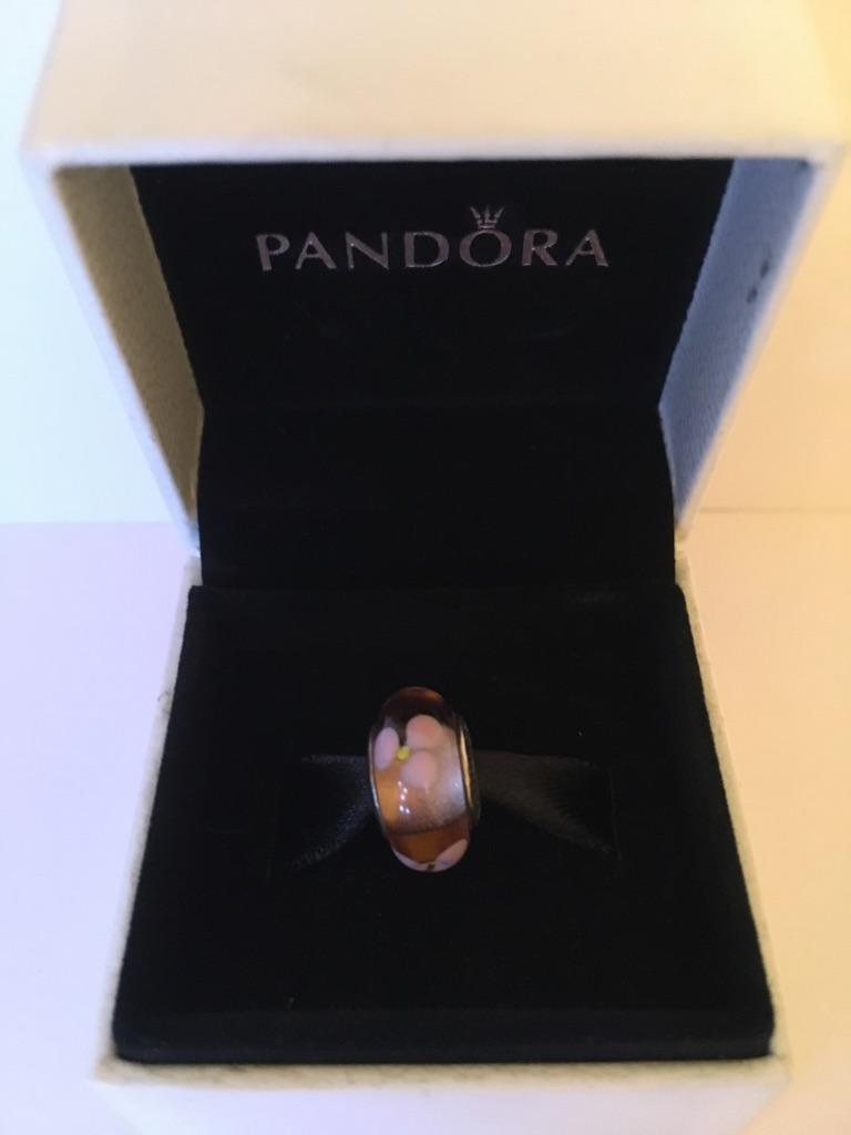 Glass Pandora Charms