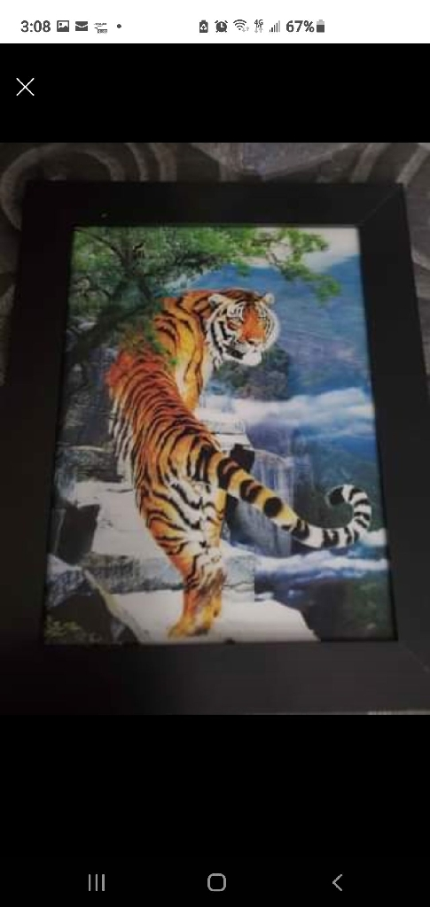 3d tiger pictures