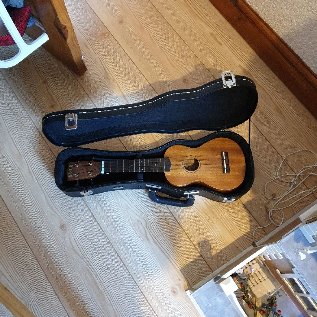 Ukulele in hard case