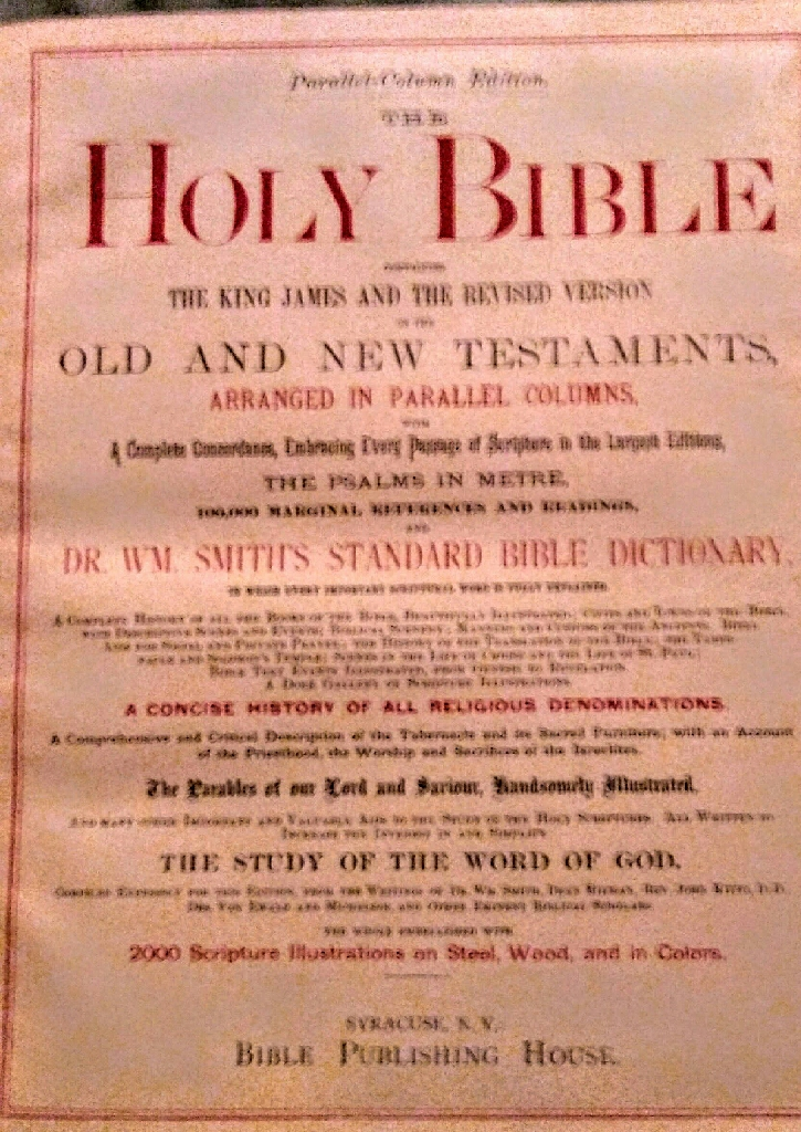 Antique Parallel Bible