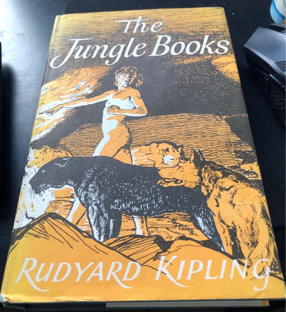 THE JUNGLE BOOKS BOOK