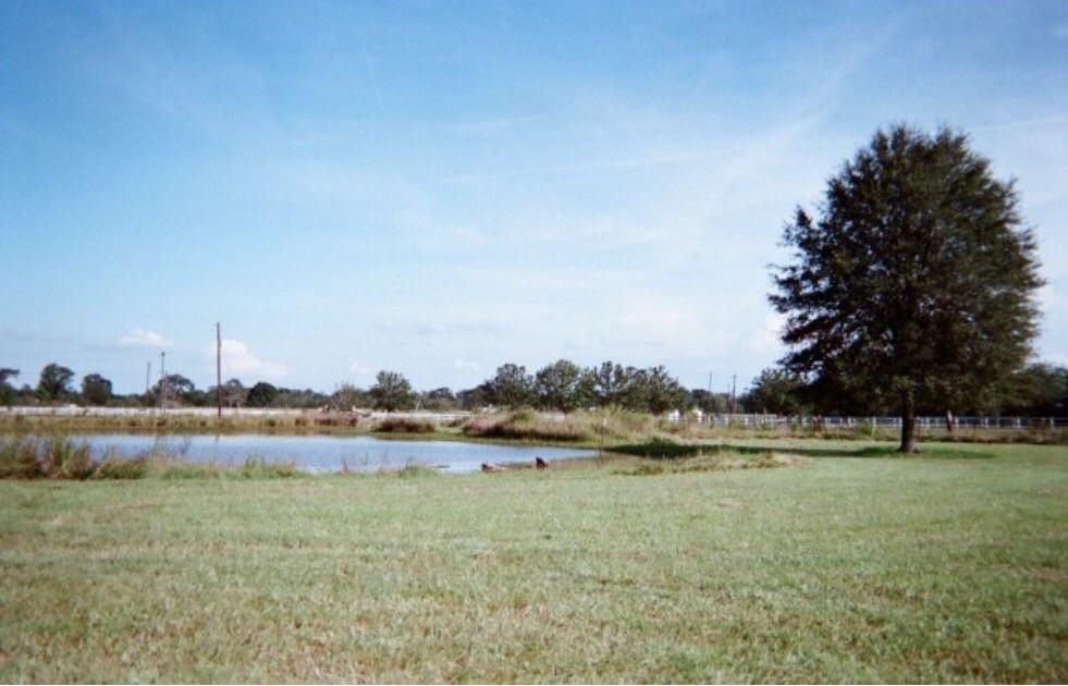 16 acres in Zachary, Louisiana