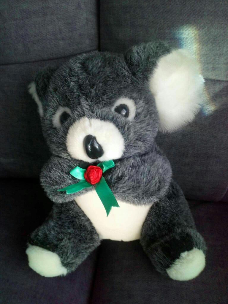 Quala bear teddy