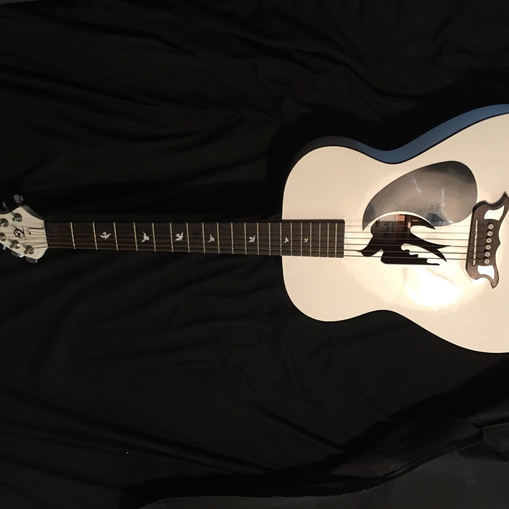 LIMITED EDITION ACOUSTIC ELECTRIC GUITAR