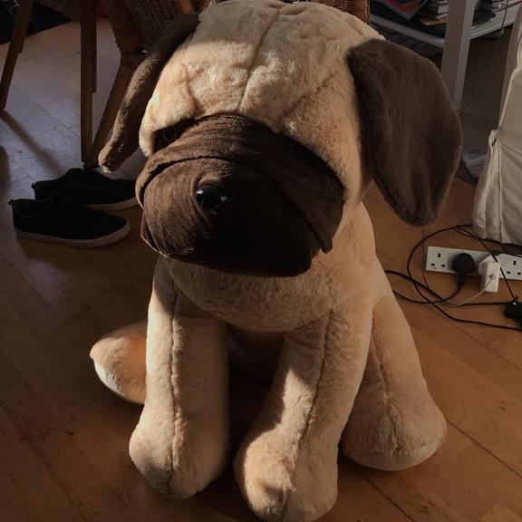 Huge plush Pug dog